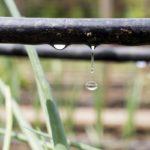 Comment piloter l'irrigation de ses cultures ?