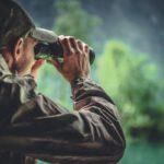 Comment s'organiser pour partir à la découverte des animaux sauvages ?